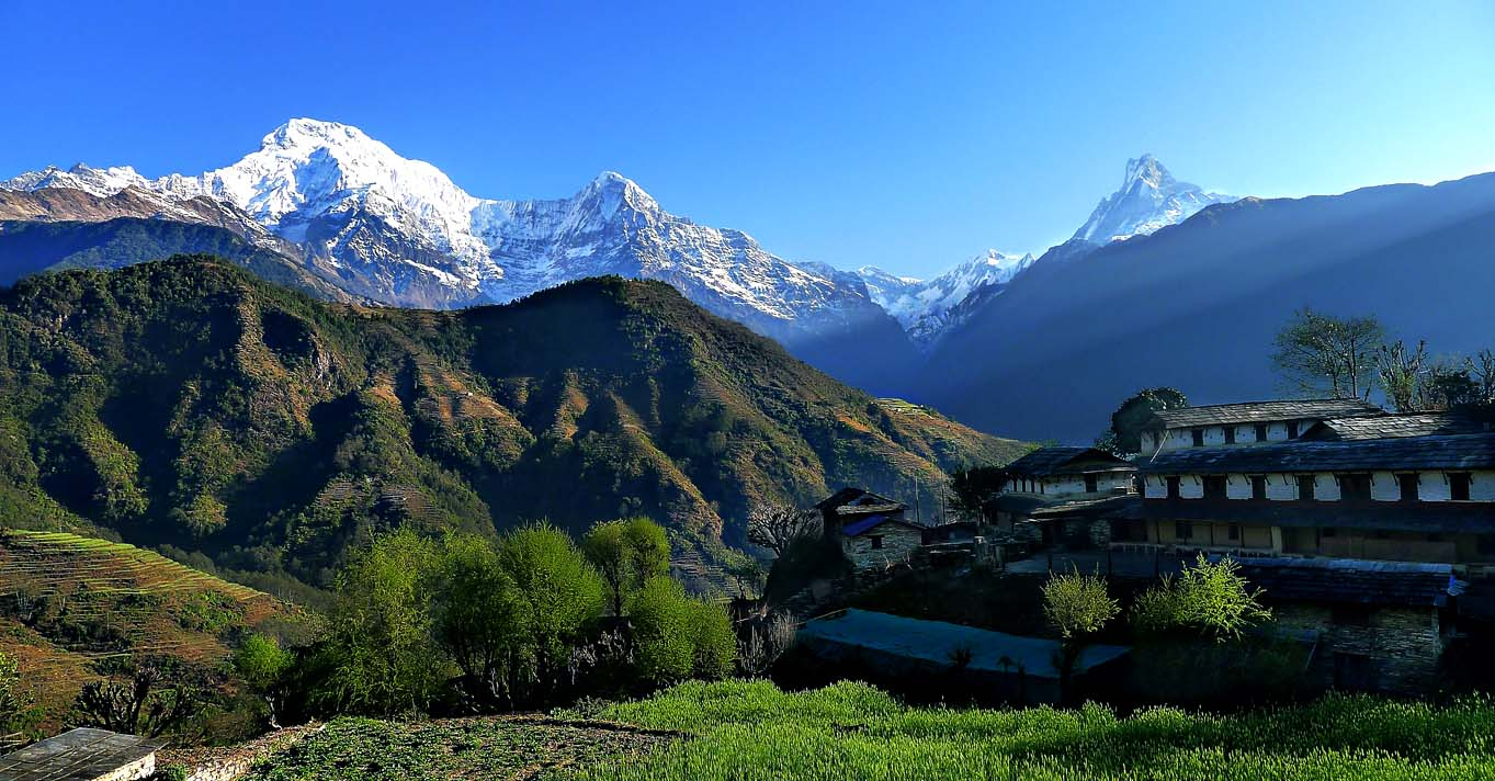 Dhampus Village Trek