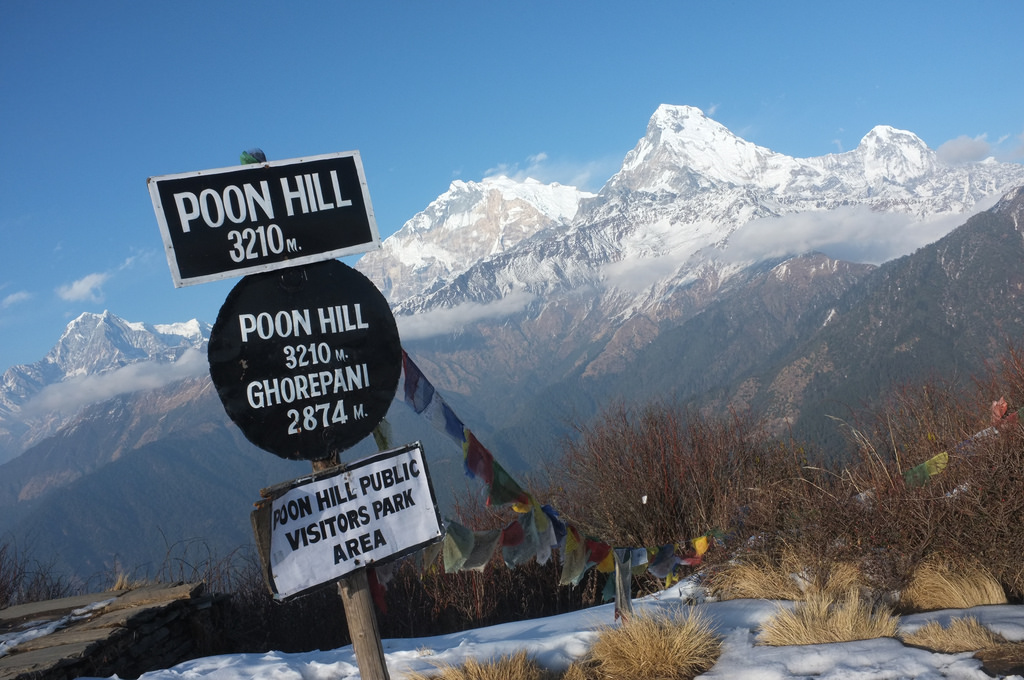Poon Hill helicopter tour operator
